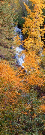 Naramata Falls through Autumn Trees 004