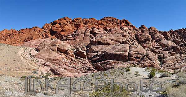 Red Rock Canyon 1958p